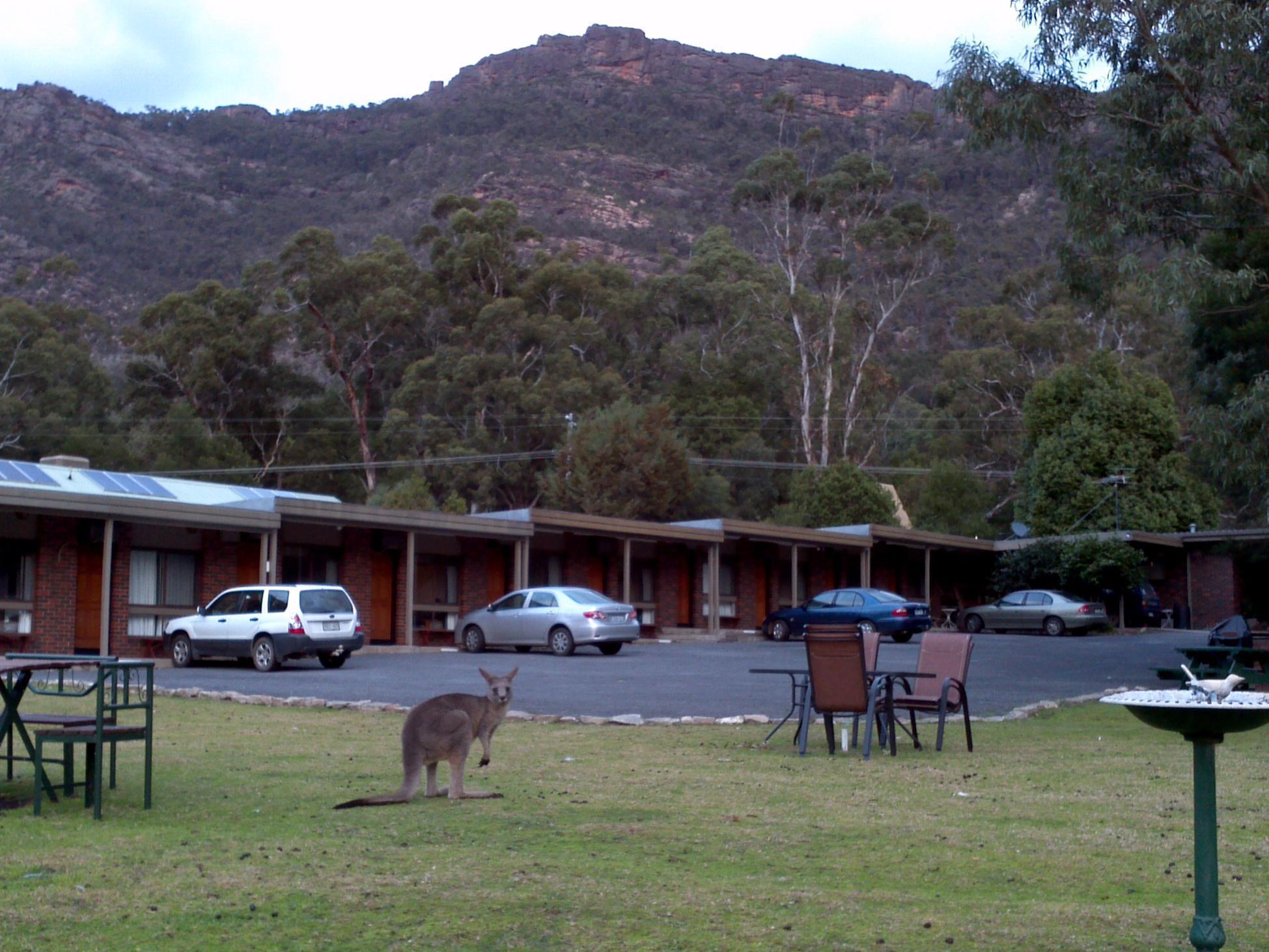 Halls Gap Motel - Hotell och Boende i Australien , Grampians