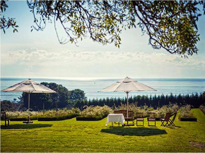 Morning Star Estate - Hotell och Boende i Australien , Mornington Peninsula