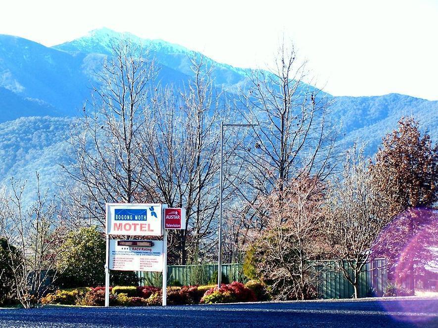 Bogong Moth Motel - Hotell och Boende i Australien , Mount Beauty