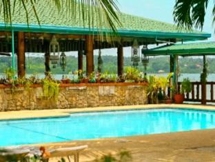 Villa Alzhun Tourist Inn and Restaurant Bohol - Bể bơi