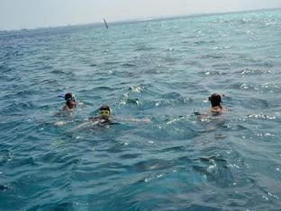 UI Inn Male City and Airport - Snorkeling on the Reef
