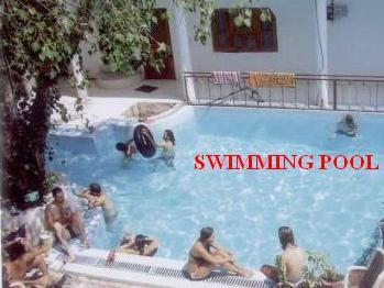 Hotel Oasis Pushkar - swimming pool