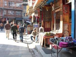 Shree Tibet Family Guest House Kathmandu - Dintorni