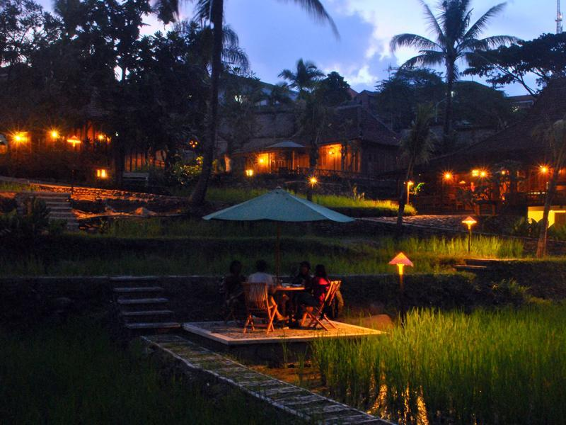 Paddy City Resort - Hotels and Accommodation in Indonesia, Asia