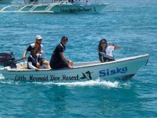 Little Mermaid Dive Resort Cebu - Diving