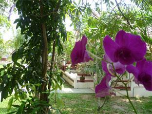 Casuarina Jomtien Hotel Pattaya - Baramie Wing