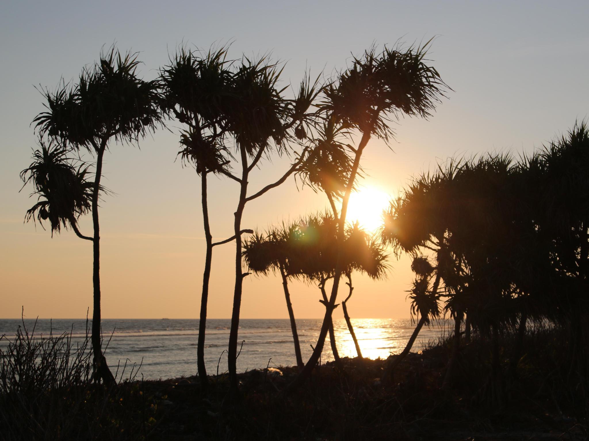 Birumeno Beach Bungalow - Hotels and Accommodation in Indonesia, Asia