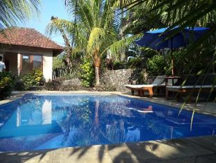 Anugerah Villas Amed Bali - Bể bơi