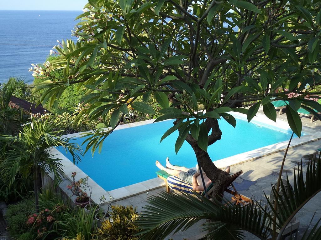 Photo from hotel Villa Cycas Hotel