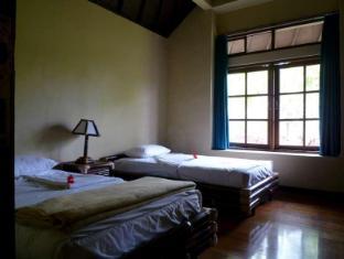 Care Resort Bali Bali - Guest Room