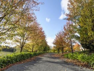 Montfort Manor Bed & Breakfast Gippsland Region - Driveway