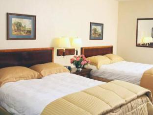 Nile Season Hotel Cairo - Guest Room