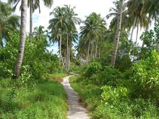 Photo of HT's Resort, Mentawai Island, Indonesia