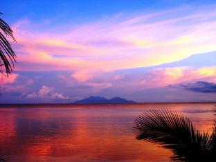 Vitamin Sea Beach Resort Bohol - Împrejurimi