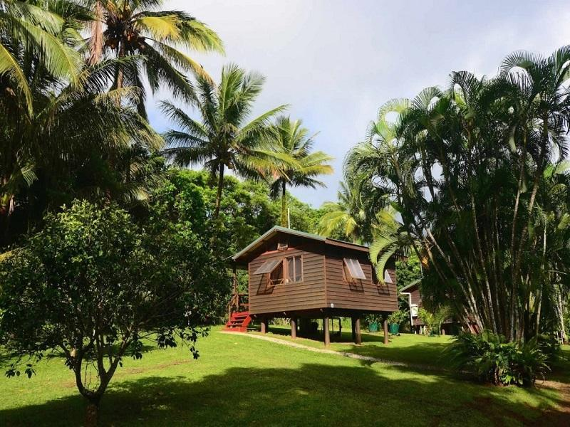 Daintree Rainforest Bungalows - Hotell och Boende i Australien , Daintree