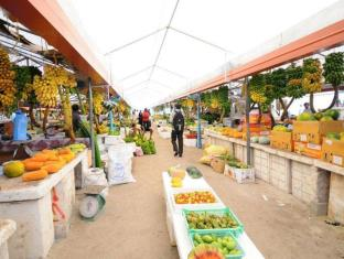Male City and Airport Hotels | Villingili View Inn Male City and Airport - Local Market in Male' City