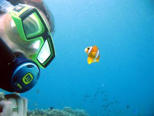 Blue Star Dive Resort Anda - Sports and Activities