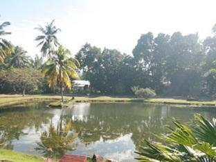 Tanjung Inn Villa De Fedelia Cherating - Surroundings