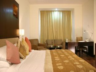 Dolphinn Just Like Home New Delhi and NCR - Executive Room