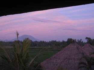 Indonesia Hotel Accommodation Cheap | Terang Bulan Cottages Bali - View