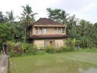 Ketekung Bungalow Bali - Villa