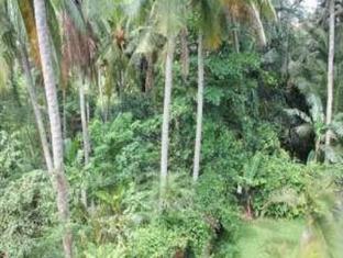 Ketekung Bungalow Bali - Surroundings