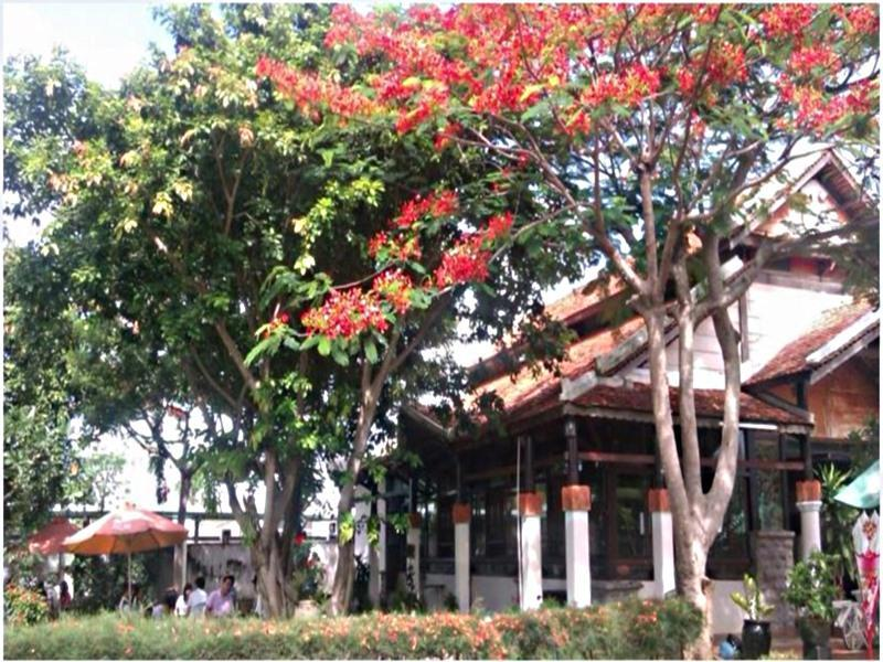Sao Mai Boutique Villas - Hotell och Boende i Vietnam , Vung Tau