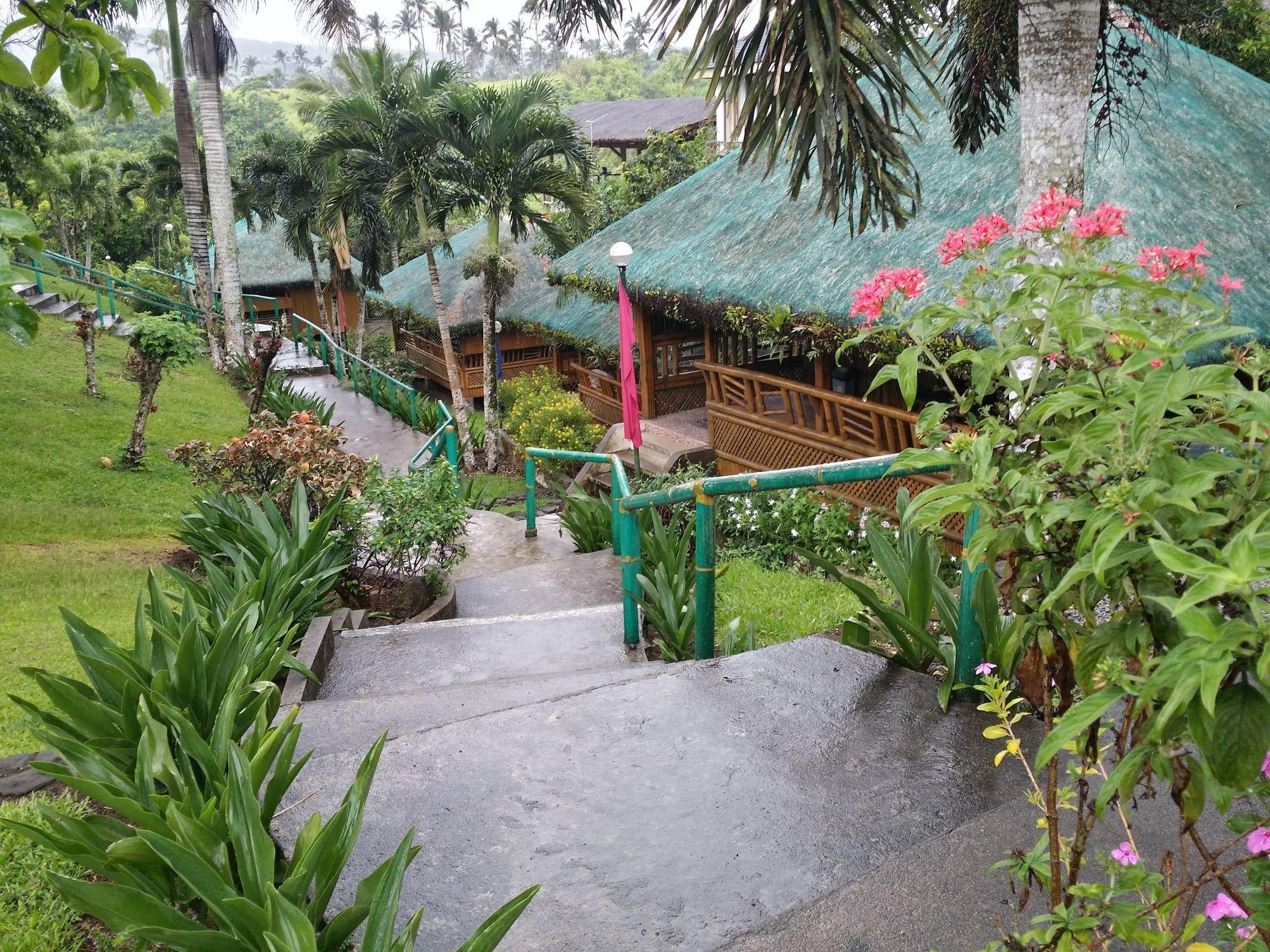 Oyster Forest Life Resort