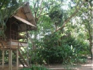Khao Sok Valley Lodge Khao Sok (Suratthani) - Bungalow