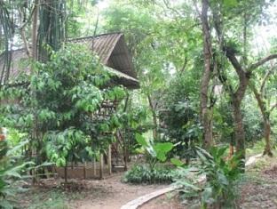 Khao Sok Valley Lodge Khao Sok (Suratthani) - Garden