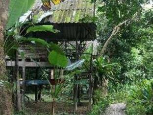 Khao Sok Valley Lodge Khao Sok (Suratthani) - Surroundings