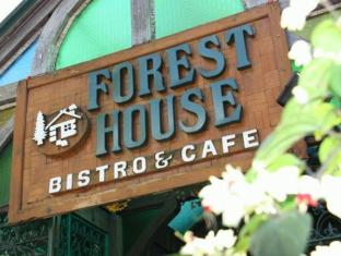 Forest House Bed and Breakfast