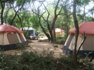 Alkin Resorts Camping Dambulla - Camp
