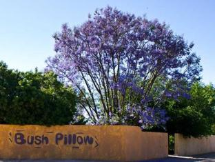 Bush Pillow Guest House photo