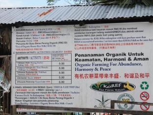 Car Rental Rice Lake Wi Kahang Organic Rice Eco Farm Resort Kluang, Malaysia: Agoda.com
