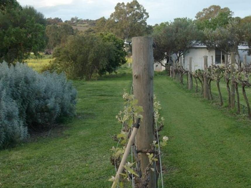 Southern Vales Bed & Breakfast - Hotell och Boende i Australien , Mclaren Vale