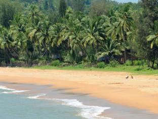 Coastal Jewel of Goa גואה - חוף ים