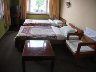Potala Tourist Home Kathmandu - Standard Twin