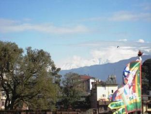 Potala Tourist Home Kathmandu - One fine morning view from the terrace