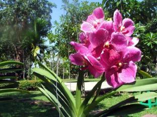 Baan Sai Yuan Phuket - Vườn