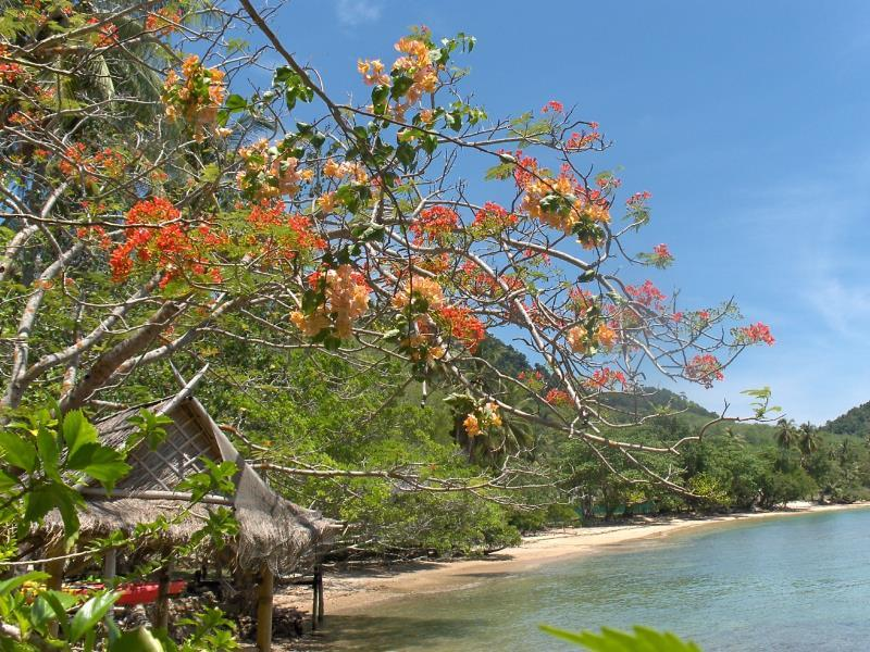 Sabai Corner Bungalows - Hotels and Accommodation in Thailand, Asia