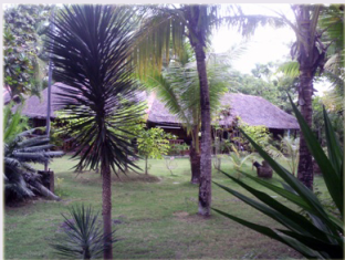 Casa Nova Garden Apartments Bohol - Hage