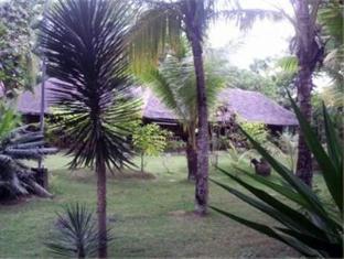 Casa Nova Garden Apartments Bohol - Alentours