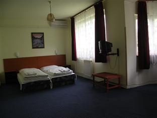 Carmen Hotel Panzio Budapest - Habitación