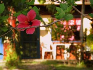 Kalipayan Beach Resort & Atlantis Dive Center Bohol - Apartman