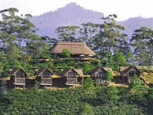 98 Acres Resort