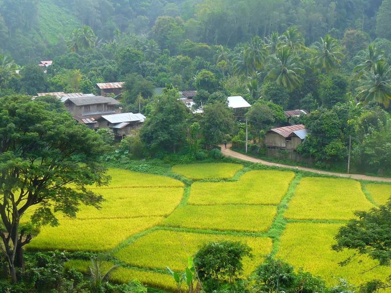 Homestay Ban Suan Khuean - Phrae
