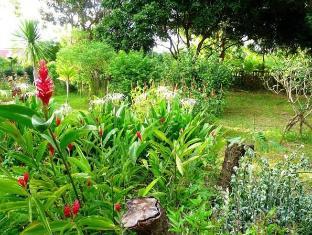 Homestay Ban Suan Khuean Phrae - Garden