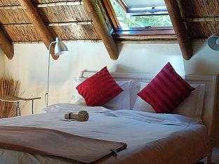 The Beautiful South Guesthouse Stellenbosch - Guest Room