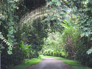 Khaokho Talaypu Resort Khao Kho - Surroundings